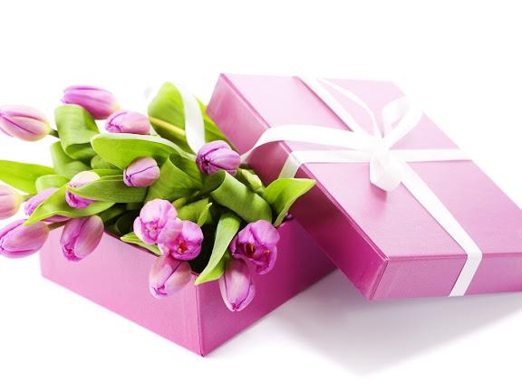 cbece-beautiful-purple-tulips-sandippatelphotos