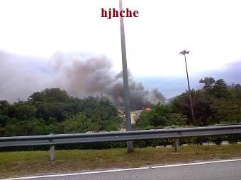 bila hutan terbakar di bakar beginiawalnya,,
