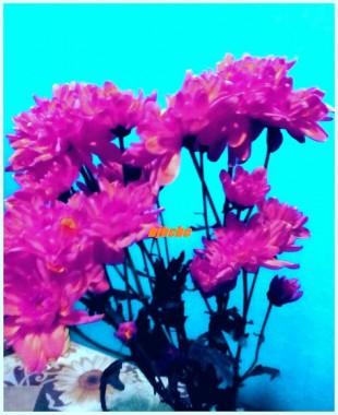 Bunga kesan edit semula tukar warnalain