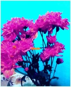 Bunga kesan edit semula tukar warna lain